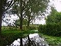 Near Littleboune, Kent, UK - panoramio.jpg