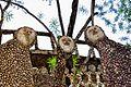 Nek Chand Garden, India (6174729753).jpg