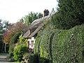 Nestling Thatch - geograph.org.uk - 361843.jpg