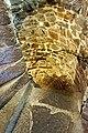 Netherlands-4990 - Circular Stairway (12571146434).jpg