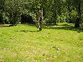Neuer Botanischer Garten - Labyrinth 005.jpg