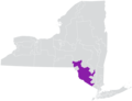 New York State Senate District 42 (2012).png