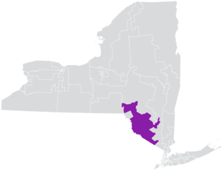 New Yorks 42nd State Senate district American legislative district