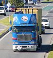 New Zealand Trucks - Flickr - 111 Emergency (45).jpg