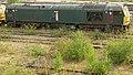 No.60081 Isambard Kingdom Brunel (Class 60) (6054117098) (2).jpg