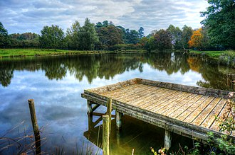 Normanby Hall - Image: Normanby Hall fishing pond
