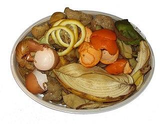 Food waste - Inevitable waste: peels of potato, onion, lemon, tangerine, banana, kiwi, egg