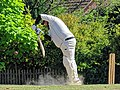 Nuthurst CC v. Henfield CC at Mannings Heath, West Sussex, England 065.jpg