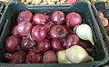 Oignons rouges au marché.jpg