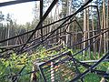 Oka Shukhov tower 2005 destroyed 2.jpg