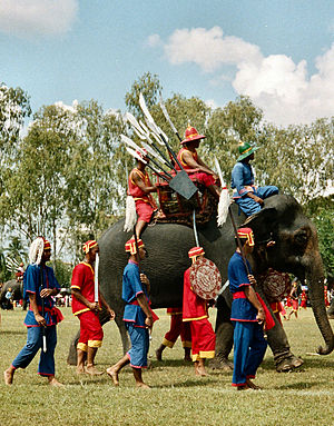 Surin Province - Elephant Festival