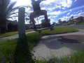Ollie over grass.JPG