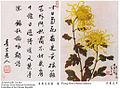 OngSchanTchowChrysanthemumLinSen.jpg