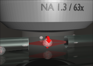 Optical tweezers - The Optical Cell Rotator is a fiber based laser trap that can hold and precisely orient living cells for tomographic microscopy.