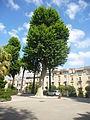 Orto botanico di Napoli 201.JPG