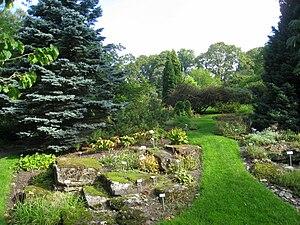 University Botanical Garden (Oslo) - Image: Oslo Botanical Garden IMG 8941