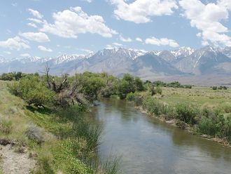 Owens River - Owens River south of Poverty Hills