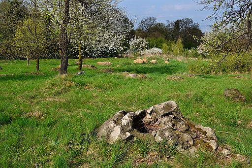 Přírodní památka Sluňáky u Rokle 2014-04-13 1