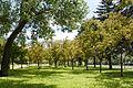 Parc linéaire de la Saint-Charles 02.jpg