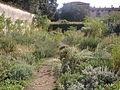 Parco di Castello, orto segreto 3.JPG