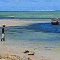 Pays et Marchés du Monde tournage Île Maurice.jpg