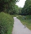 Pentewan valley footpath - geograph.org.uk - 1096780.jpg