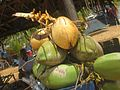 Picture of coconuts.jpg