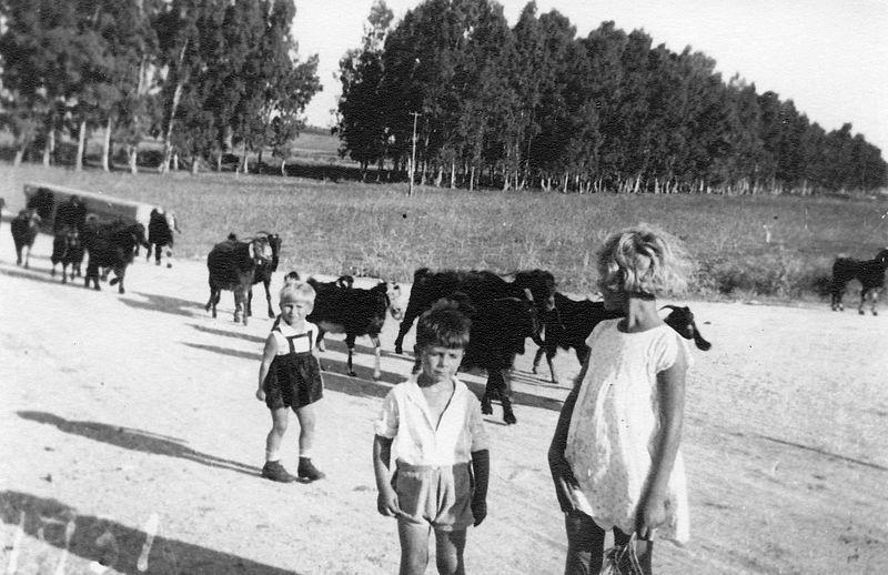 גן-שמואל-ילדים בטיול 1931