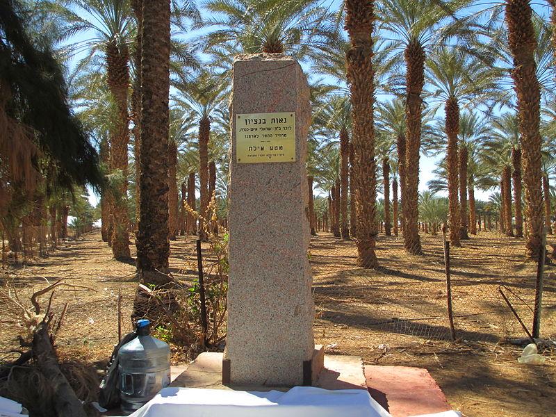 אנדרטה לבן ציון ישראלי במטע התמרים של קיבוץ אילות
