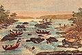 Piroguiers Busi-Nenge sur le Maroni.jpg