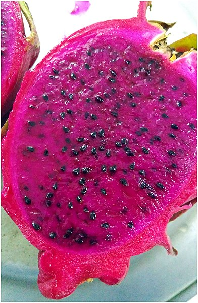 File:Pitaya Fruit.jpg