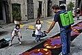 Pitigliano Infiorata 003.jpg