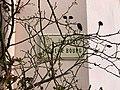Plaque Impasse Vieux Bourg - Solutré-Pouilly (FR71) - 2021-03-02 - 2.jpg