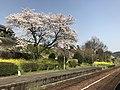 Platform of Onoya Station 8.jpg