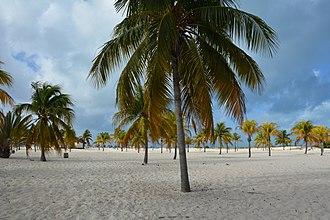Cayo Largo del Sur - Playa Sirena, a popular beach located west of the island