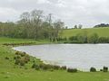 Pond, Cotfield - geograph.org.uk - 176155.jpg