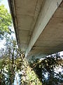 Pont de Jons (dessous).JPG