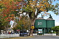 Port Gamble, WA - water tanks 02.jpg