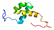 Protein LCOR PDB 2cob.png