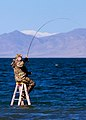Pyramid Lake Lahontan Cutthroat Fishery.jpg