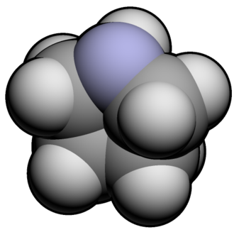 Pyrrolidine - Image: Pyrrolidine 3d