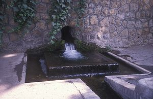 Traditional water sources of Persian antiquity - A Kariz surfacing in Niavaran, Tehran. It is used for watering the grounds of The National Library of Iran.