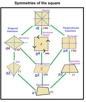 Fibrifold - Image: Quadrilateral tree