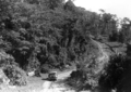 Queensland State Archives 1311 On the road from Ravenshoe to Tully Falls c 1935.png