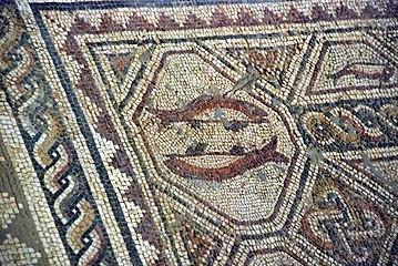Quintanilla de la Cueza Villa romana Tejada Habitación 20 Mosaico de los Peces 002.jpg