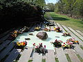 Råå kyrkogård, minneslunden.jpg