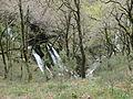 Río Mandeo (Betanzos, A Coruña, Galicia, España) 06.JPG