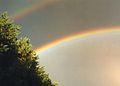 Rainbow, Smoluchowskiego, Poznan, 16.10.1999.jpg