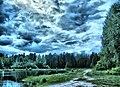 Ramensky District, Moscow Oblast, Russia - panoramio - Andris Malygin (24).jpg