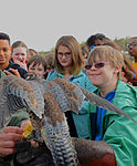 Ramstein students dive into Earth Day 150417-F-ZC075-108.jpg